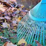Empresas de Limpiezas Fuenlabrada Limpieza de otoño 2